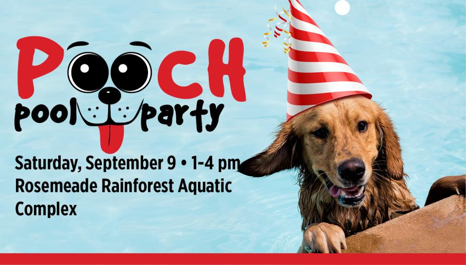2017 Pooch Pool Party_SharePoint