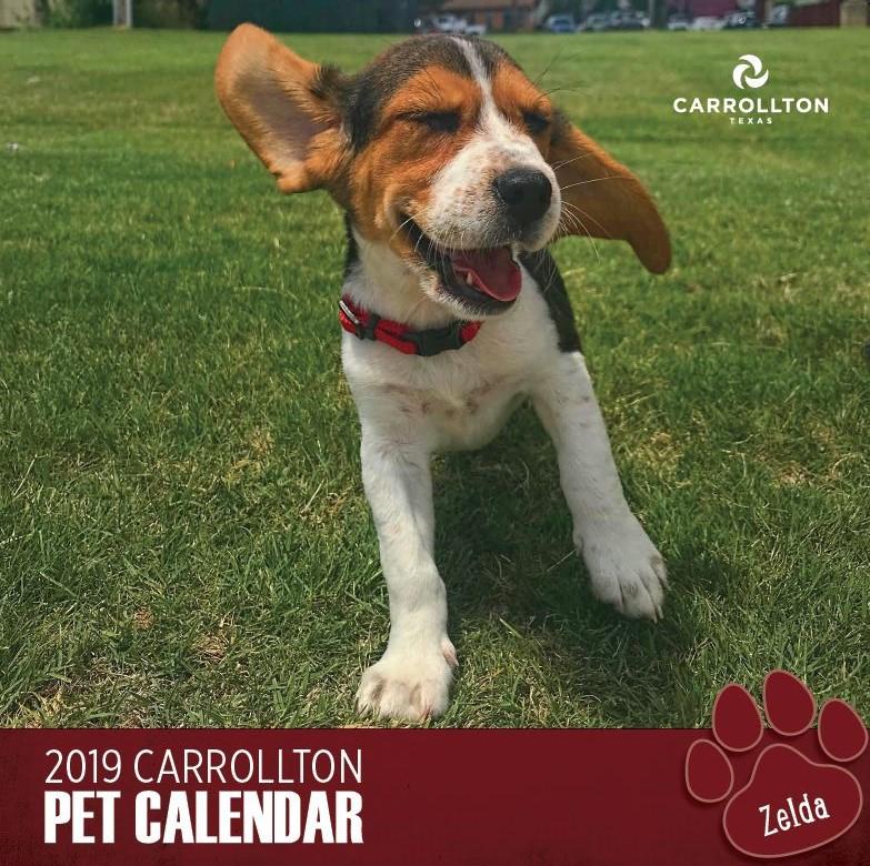 Pet Photo Calendar cover 2019