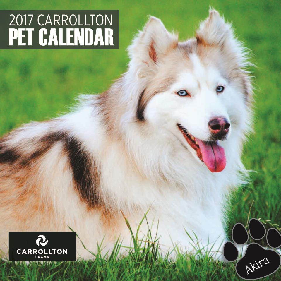 2017 Pet Calendar COVER image