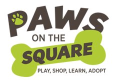 Paws-on-the-Square-p2