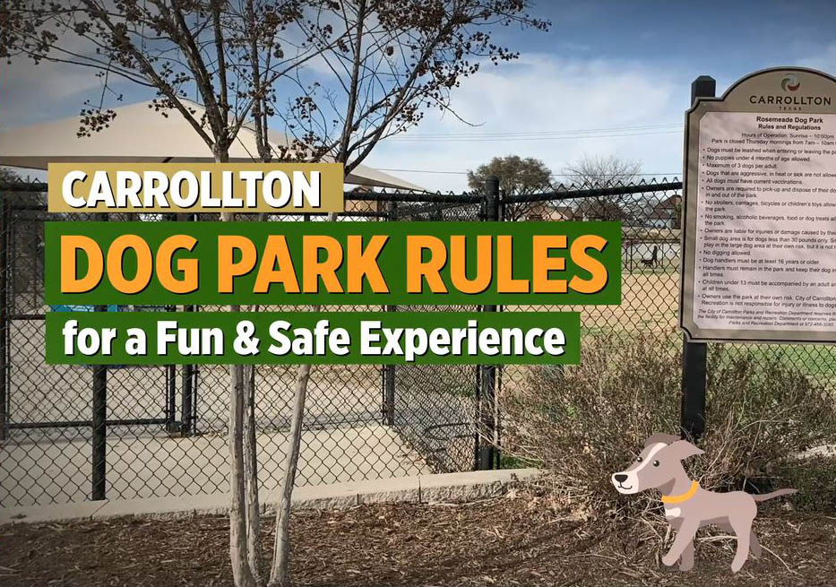 Dog Park News Item Thumbnail Photo