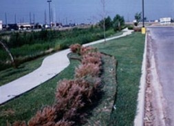 Landscaping Commercial Property