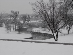 click on photo for larger view of snowy greenbelt