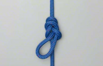 directional_8_knot