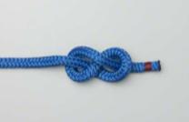figure_8_knot